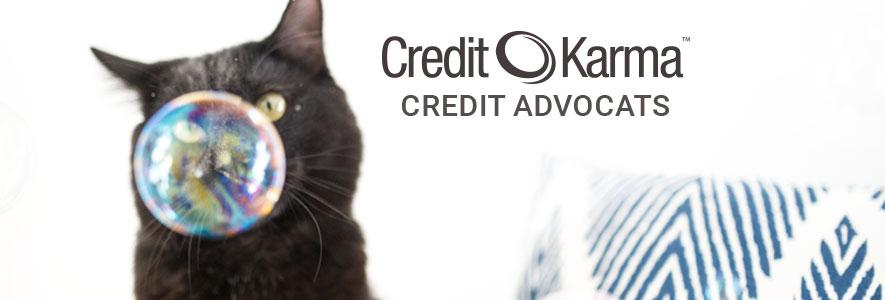 Meet our Credit Advocats: free cat wallpaper