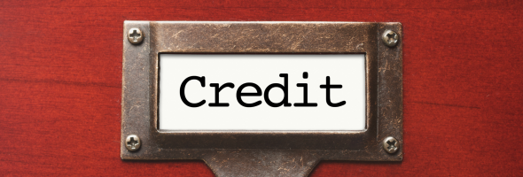 What Is in a Credit Score?